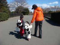 11年3月4日立川昭和記念公園 003.jpg
