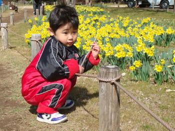 11年3月4日立川昭和記念公園 020.jpg