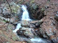 2011年11月23日滝子山 007.jpg