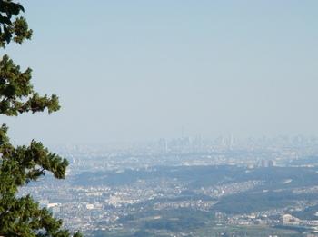 10年11月3日高尾山 005.jpg
